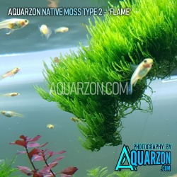 AQUARZON NATIVE MOSS TYPE 2...